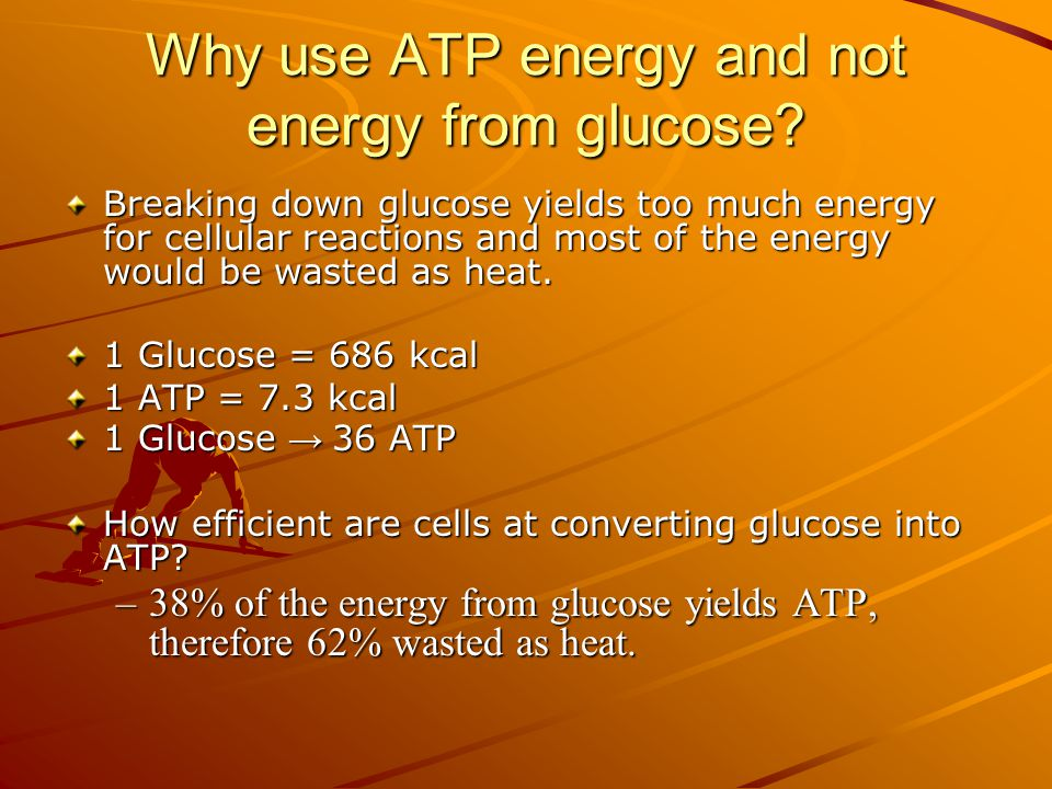 Why use ATP energy and not energy from glucose