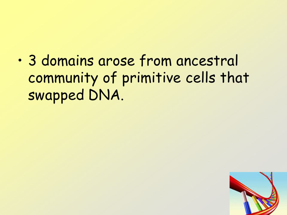 3 domains arose from ancestral community of primitive cells that swapped DNA.