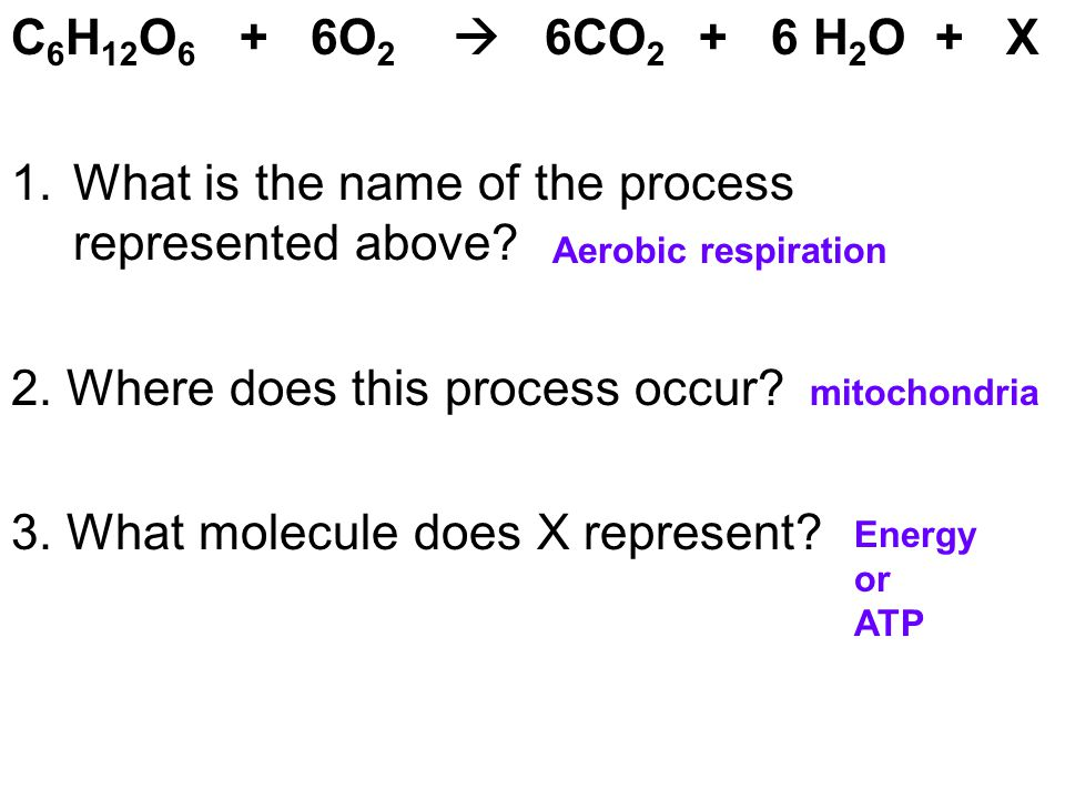 What is the name of the process represented above