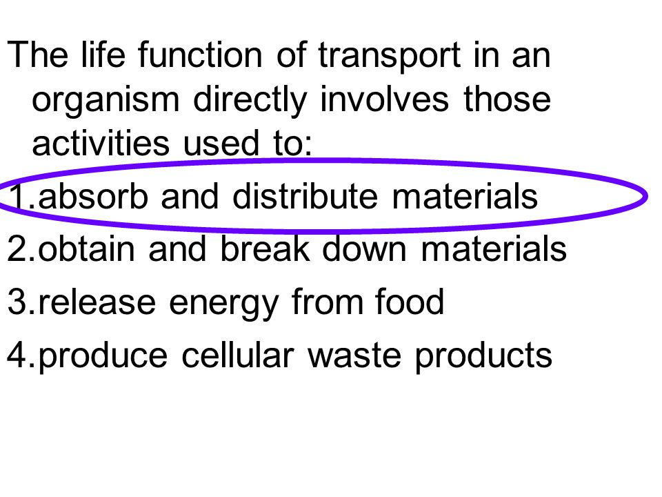 The life function of transport in an organism directly involves those activities used to: