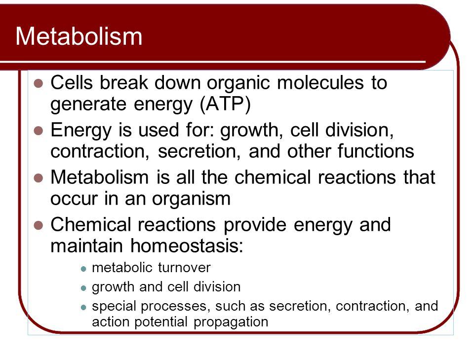 Metabolism Cells break down organic molecules to generate energy (ATP)
