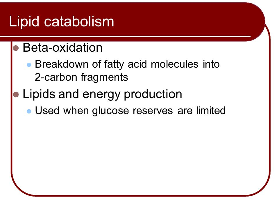 Lipid catabolism Beta-oxidation Lipids and energy production