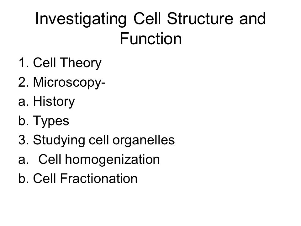 Investigating Cell Structure and Function