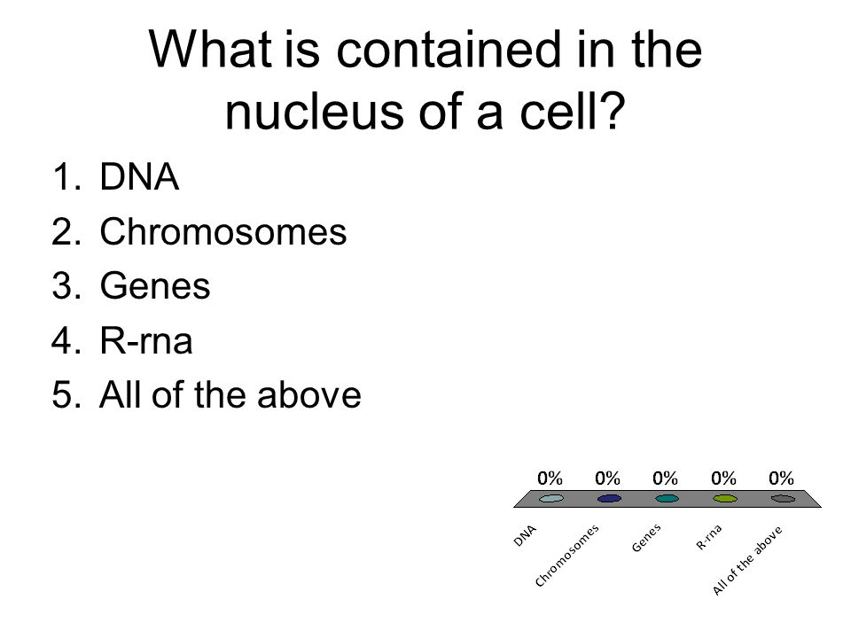 What is contained in the nucleus of a cell