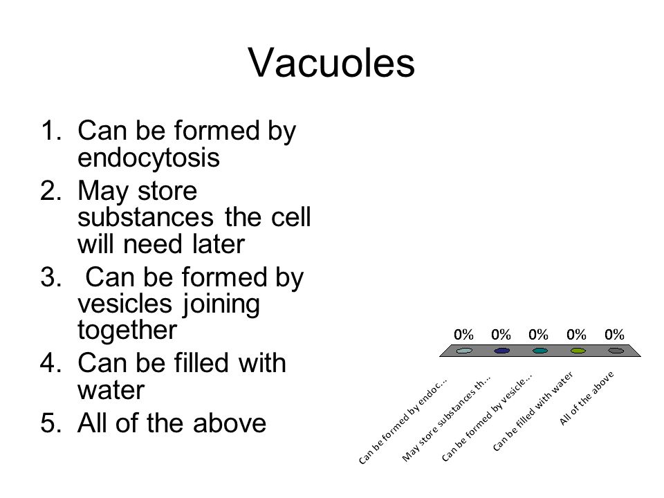 Vacuoles Can be formed by endocytosis