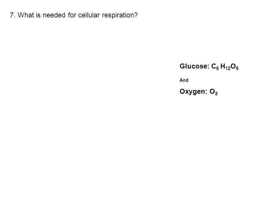 7. What is needed for cellular respiration