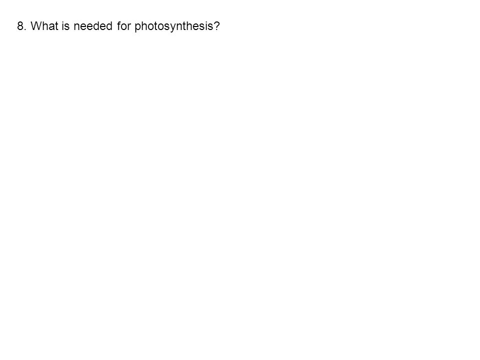 8. What is needed for photosynthesis