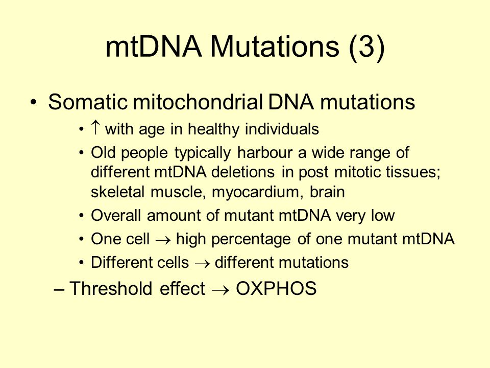 mtDNA Mutations (3) Somatic mitochondrial DNA mutations