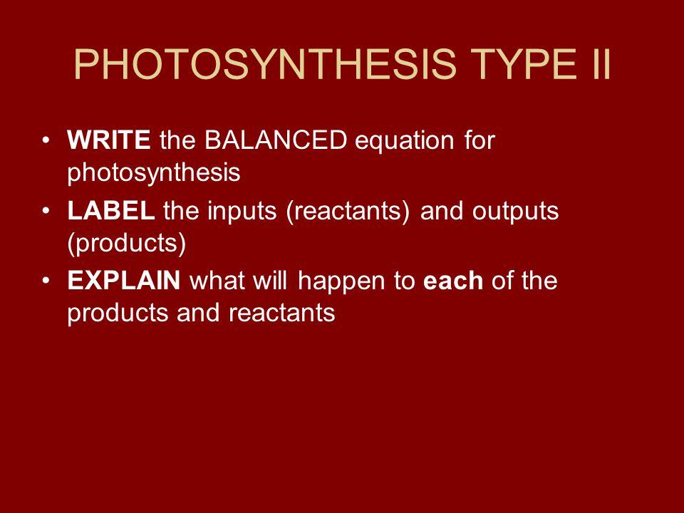 PHOTOSYNTHESIS TYPE II