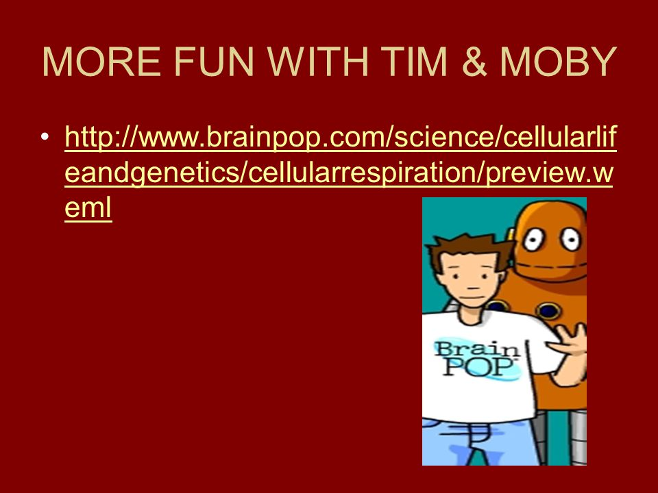 MORE FUN WITH TIM & MOBY http://www.brainpop.com/science/cellularlifeandgenetics/cellularrespiration/preview.weml.