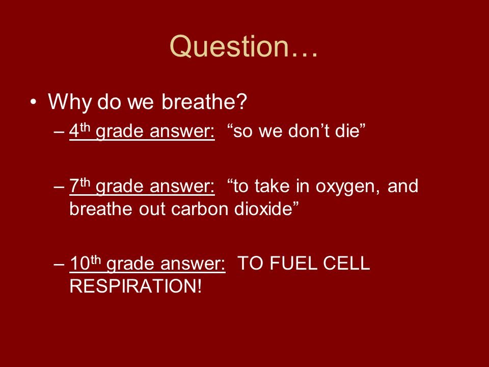 Question… Why do we breathe 4th grade answer: so we don't die