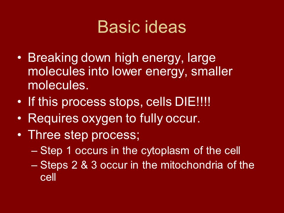 Basic ideas Breaking down high energy, large molecules into lower energy, smaller molecules. If this process stops, cells DIE!!!!