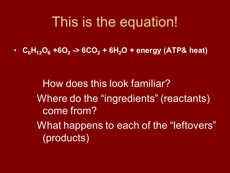 This is the equation! C6H12O6 +6O2 -> 6CO2 + 6H2O + energy (ATP& heat) How does this look familiar