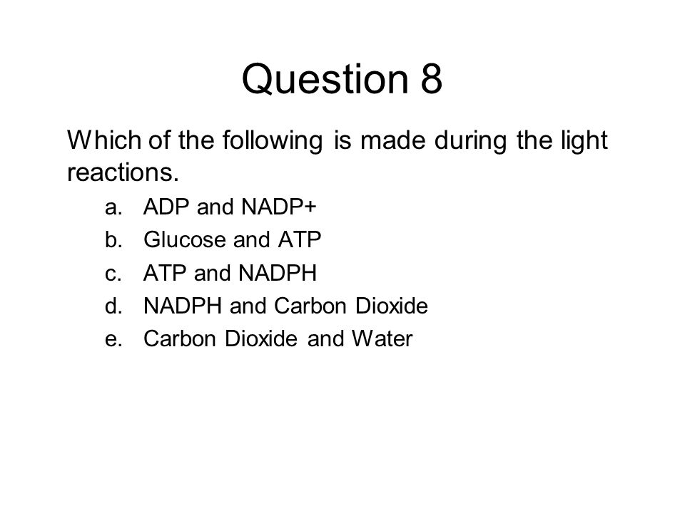 Question 8 Which of the following is made during the light reactions.