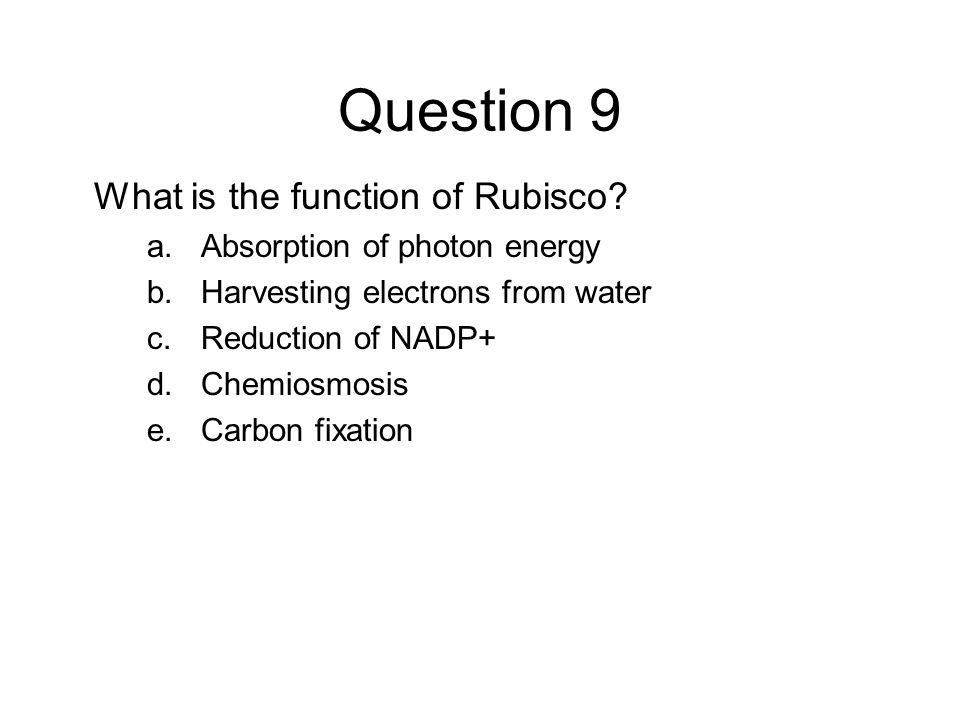 Question 9 What is the function of Rubisco