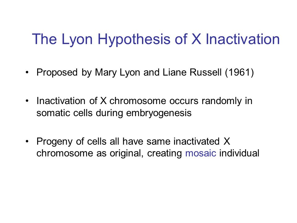 The Lyon Hypothesis of X Inactivation
