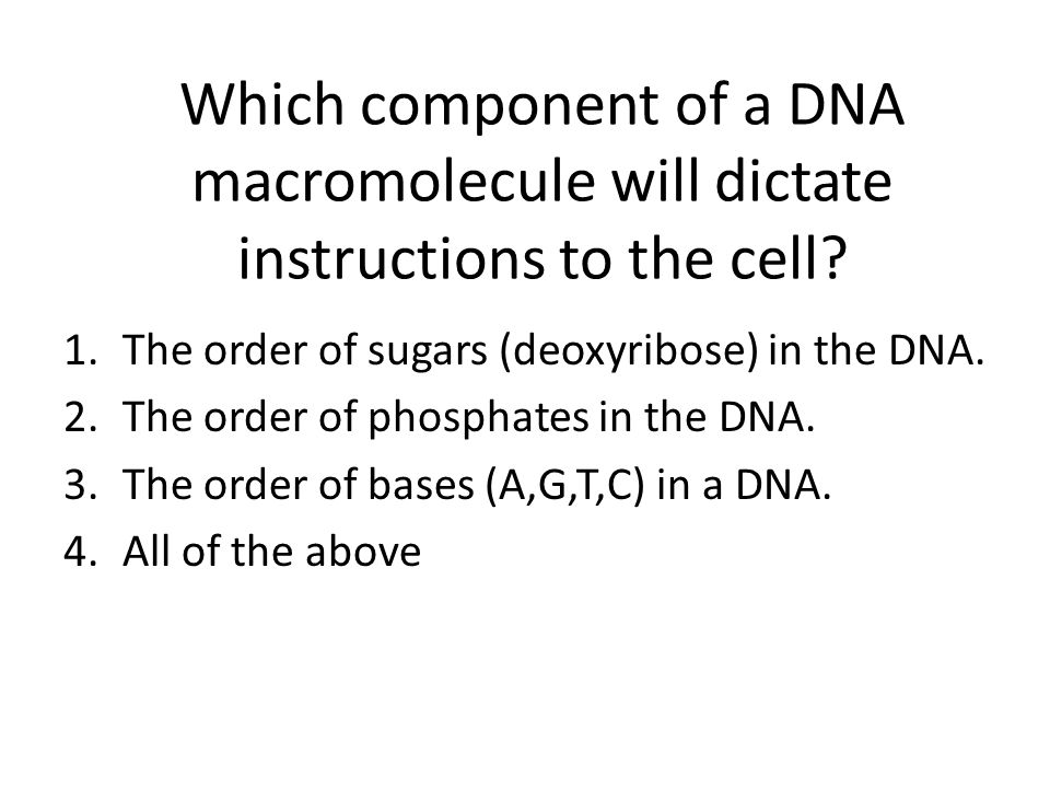 Which component of a DNA macromolecule will dictate instructions to the cell