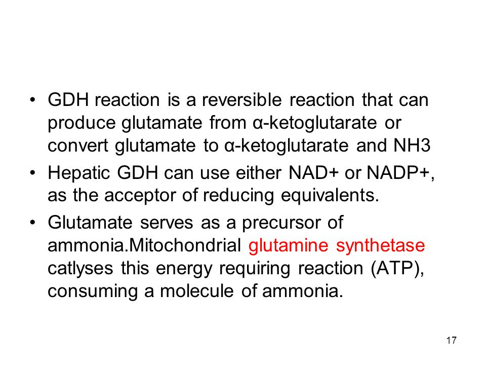GDH reaction is a reversible reaction that can produce glutamate from α-ketoglutarate or convert glutamate to α-ketoglutarate and NH3