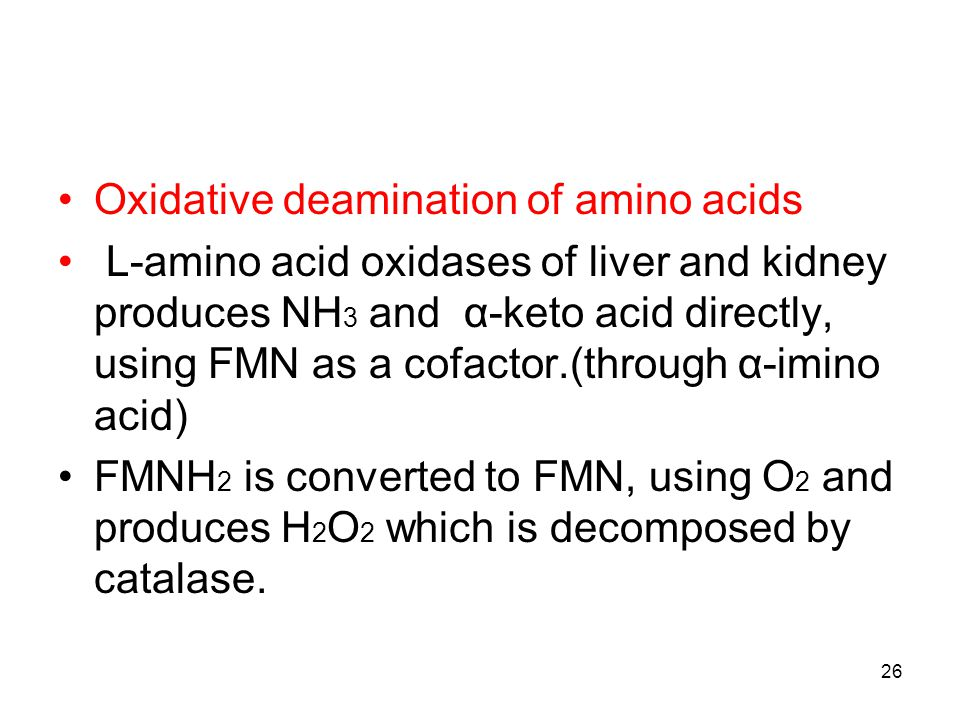 Oxidative deamination of amino acids