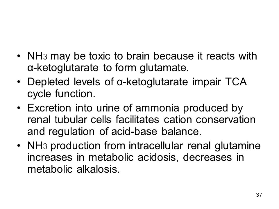 NH3 may be toxic to brain because it reacts with α-ketoglutarate to form glutamate.