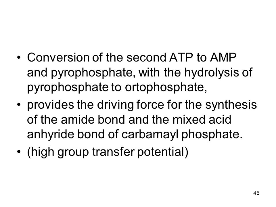 Conversion of the second ATP to AMP and pyrophosphate, with the hydrolysis of pyrophosphate to ortophosphate,
