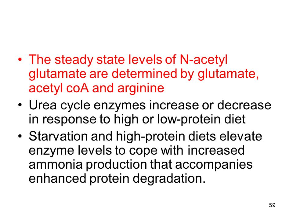 The steady state levels of N-acetyl glutamate are determined by glutamate, acetyl coA and arginine