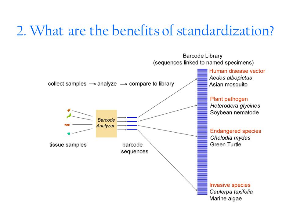 2. What are the benefits of standardization