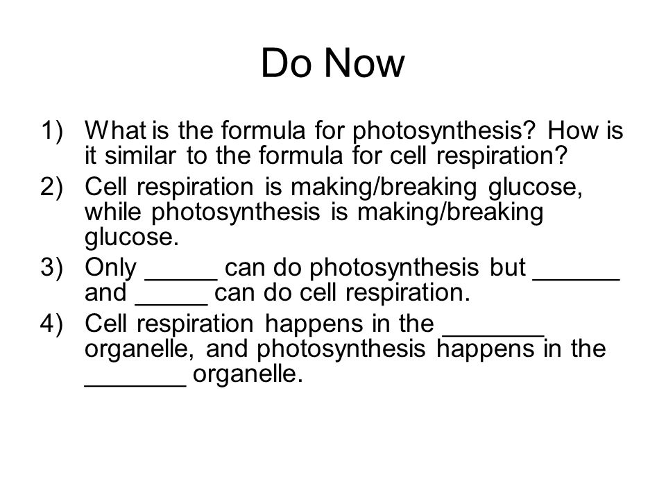 Do Now What is the formula for photosynthesis How is it similar to the formula for cell respiration
