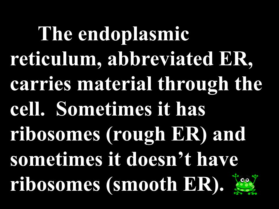 The endoplasmic reticulum, abbreviated ER, carries material through the cell.
