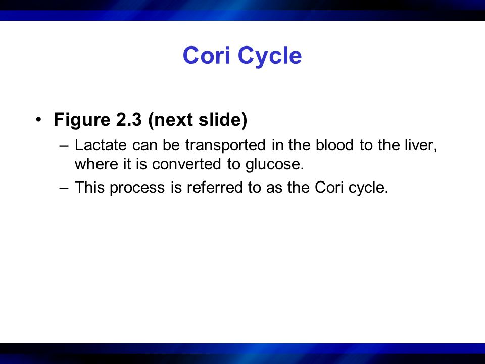 Cori Cycle Figure 2.3 (next slide)