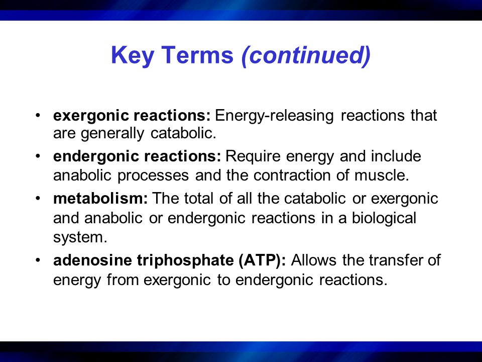 Key Terms (continued) exergonic reactions: Energy-releasing reactions that are generally catabolic.