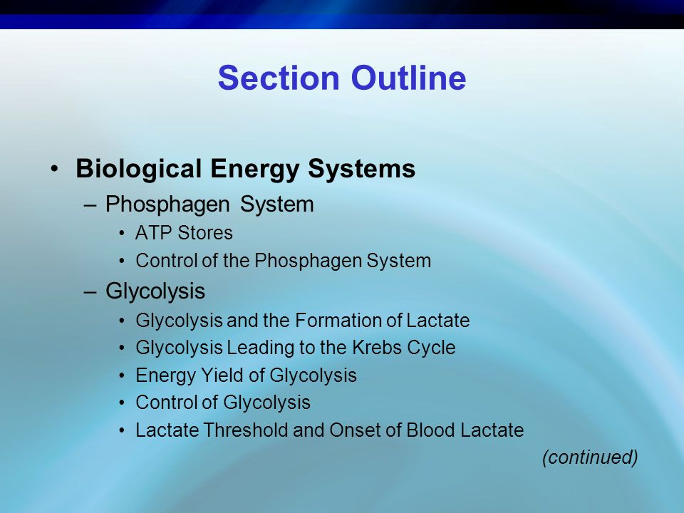 Section Outline Biological Energy Systems Phosphagen System Glycolysis