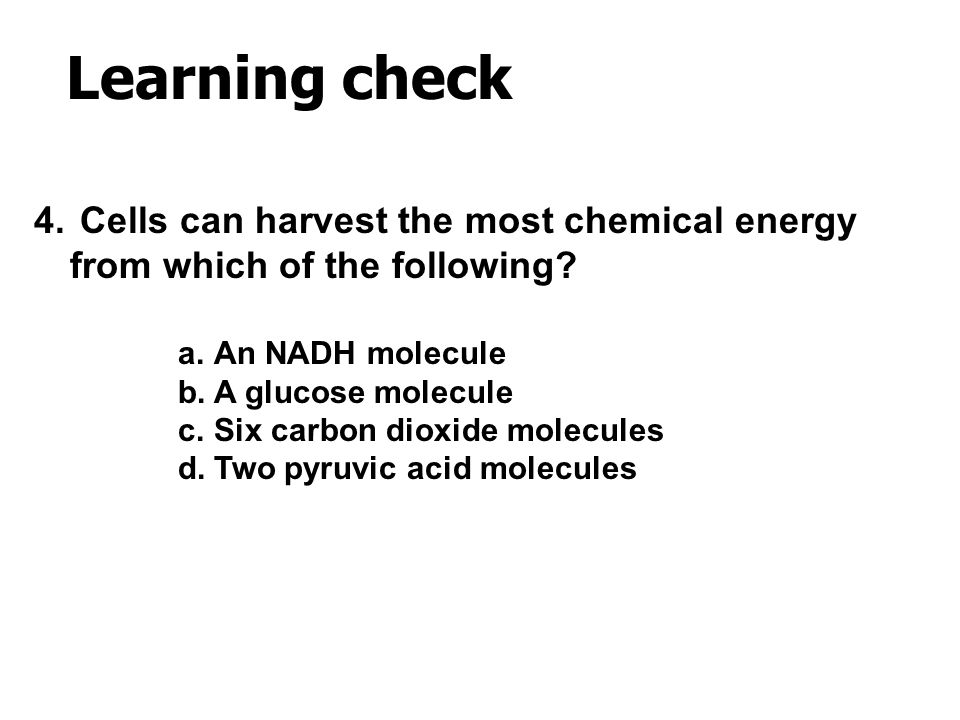 Learning check Cells can harvest the most chemical energy from which of the following An NADH molecule.