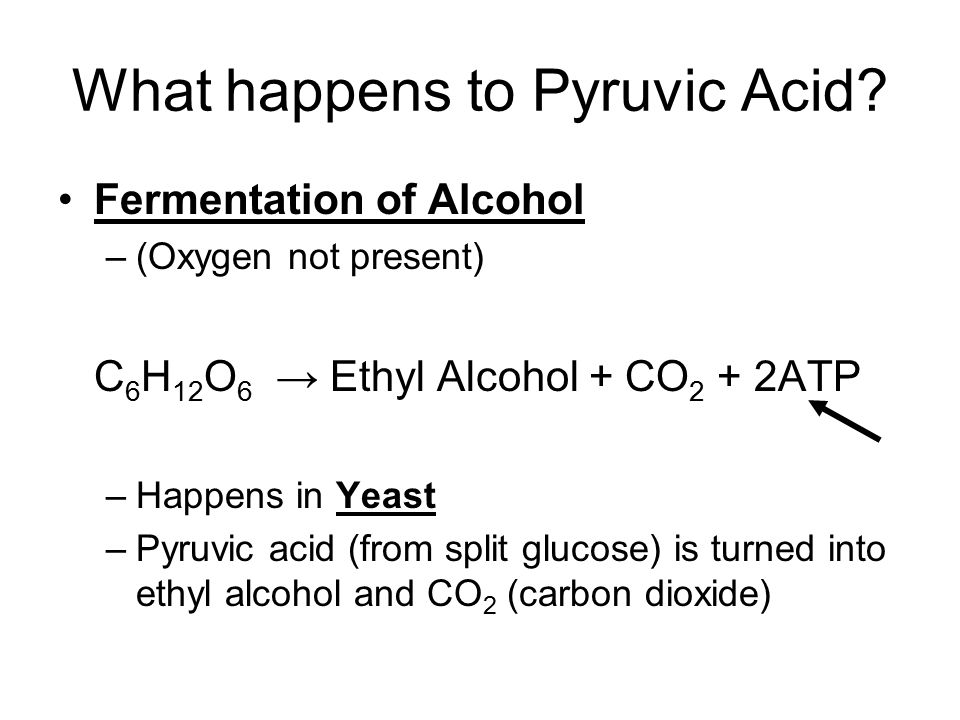 What happens to Pyruvic Acid