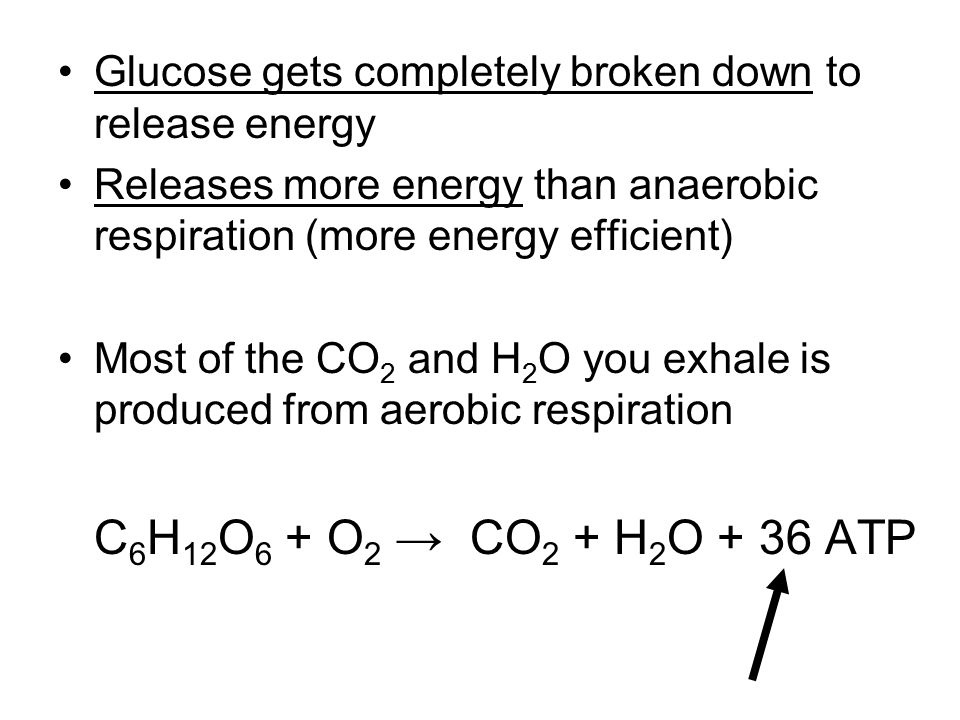 Glucose gets completely broken down to release energy