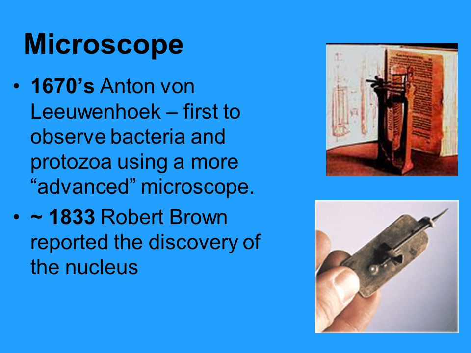 Microscope 1670's Anton von Leeuwenhoek – first to observe bacteria and protozoa using a more advanced microscope.