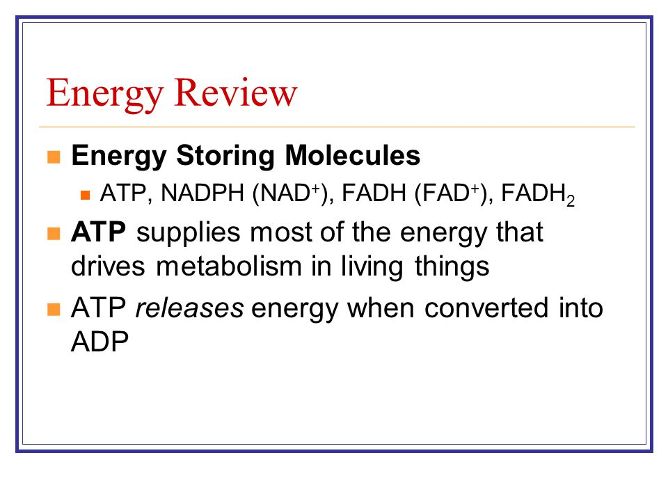 Energy Review Energy Storing Molecules