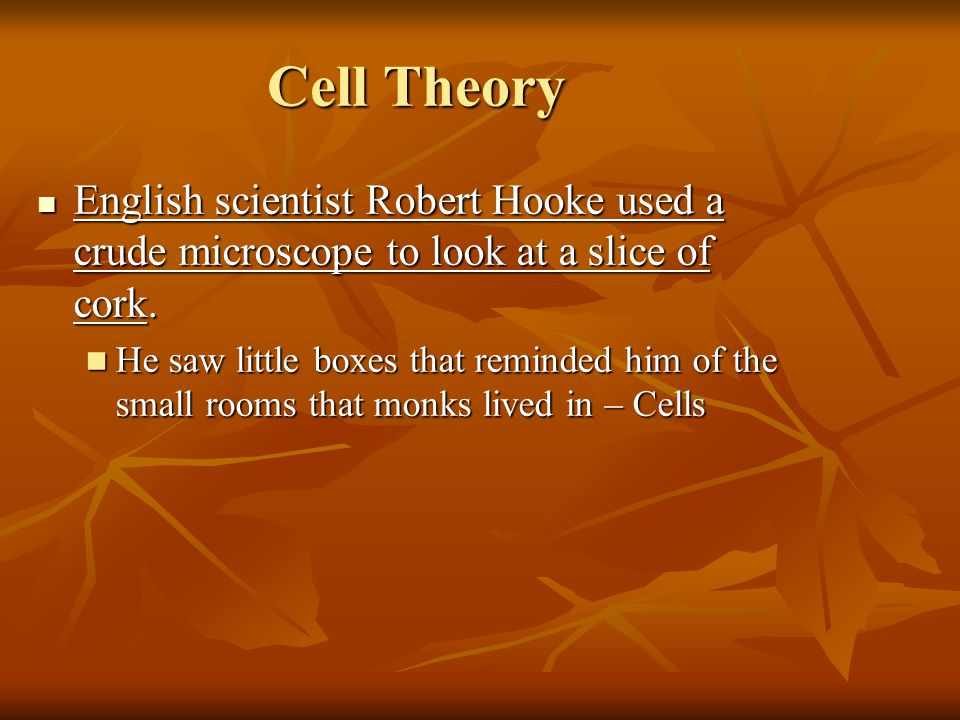 Cell Theory English scientist Robert Hooke used a crude microscope to look at a slice of cork.