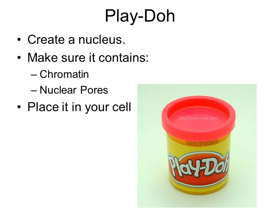Play-Doh Create a nucleus. Make sure it contains: