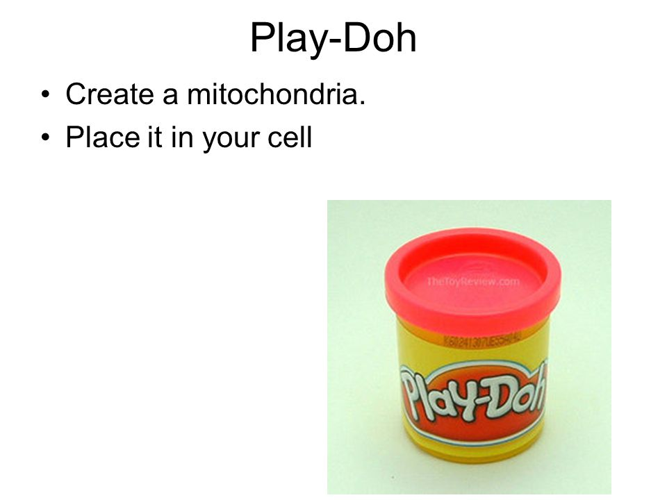 Play-Doh Create a mitochondria. Place it in your cell