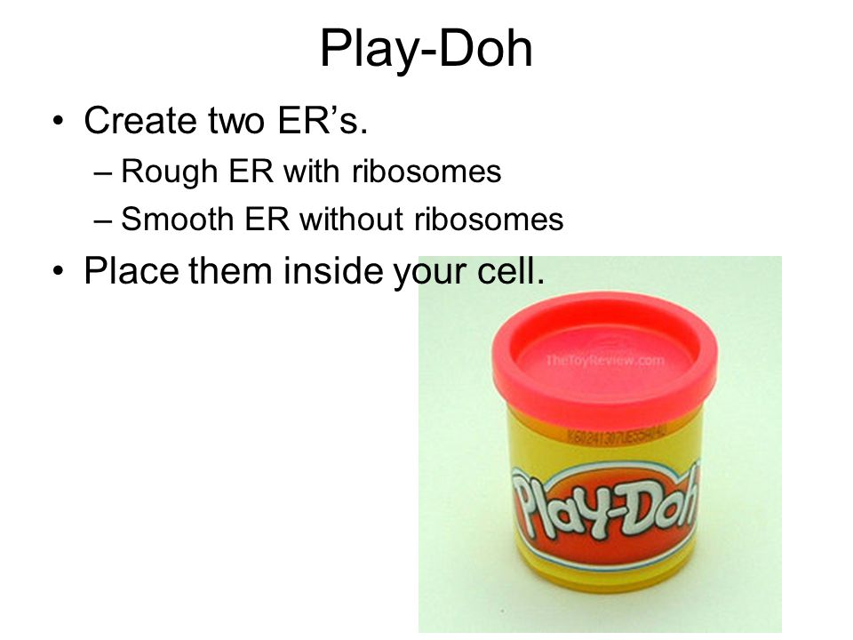 Play-Doh Create two ER's. Place them inside your cell.