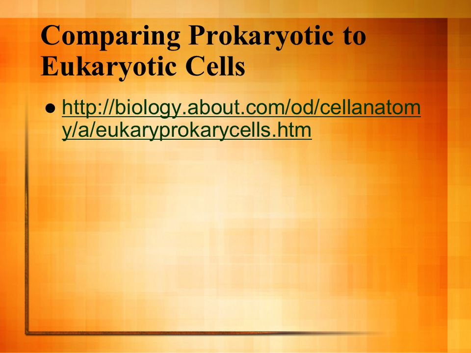 Comparing Prokaryotic to Eukaryotic Cells