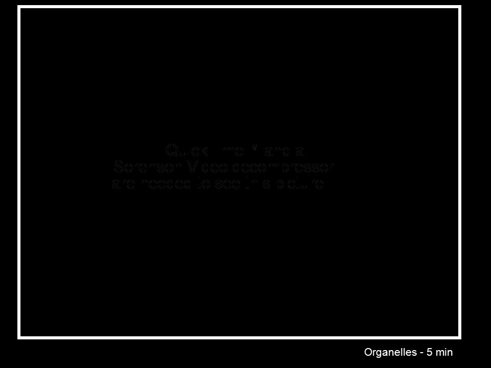 Organelles - 5 min