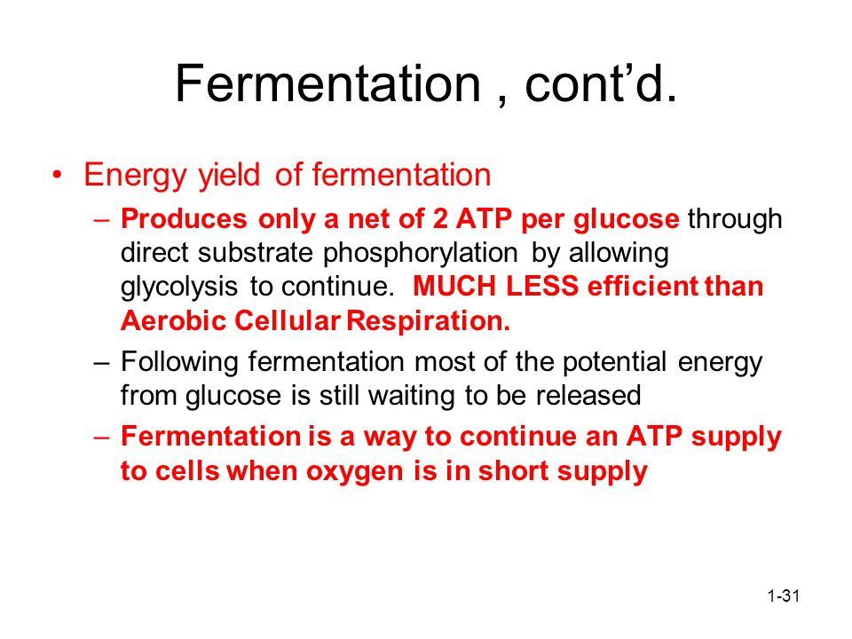 Fermentation , cont'd. Energy yield of fermentation
