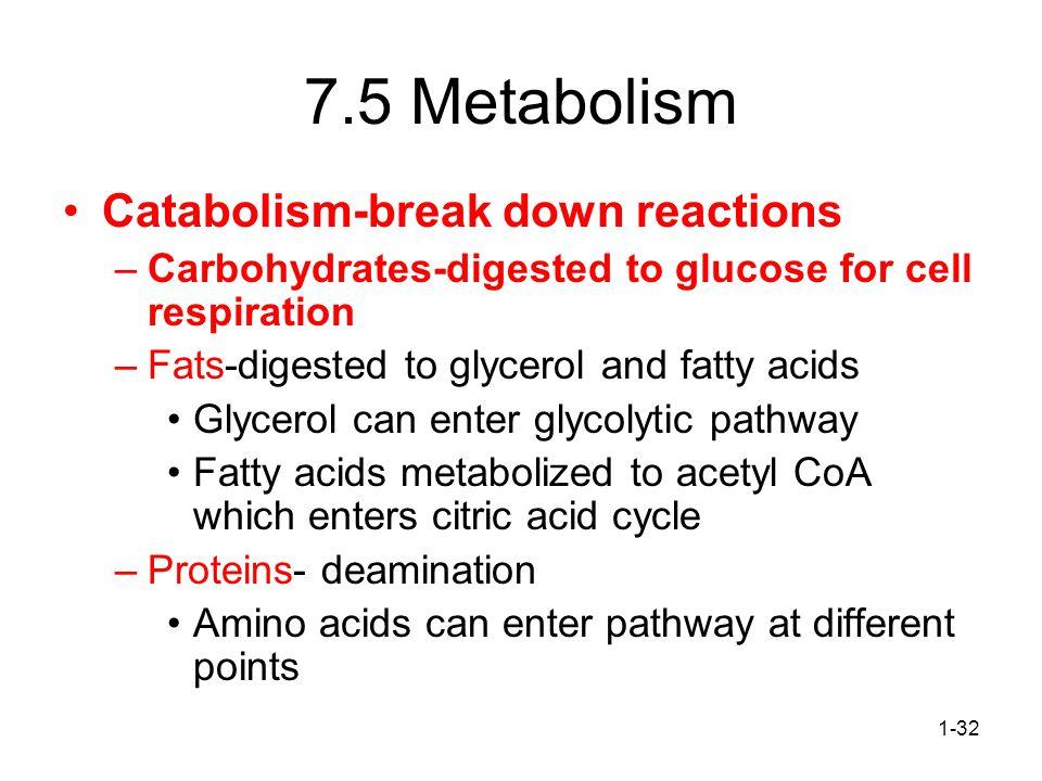 7.5 Metabolism Catabolism-break down reactions