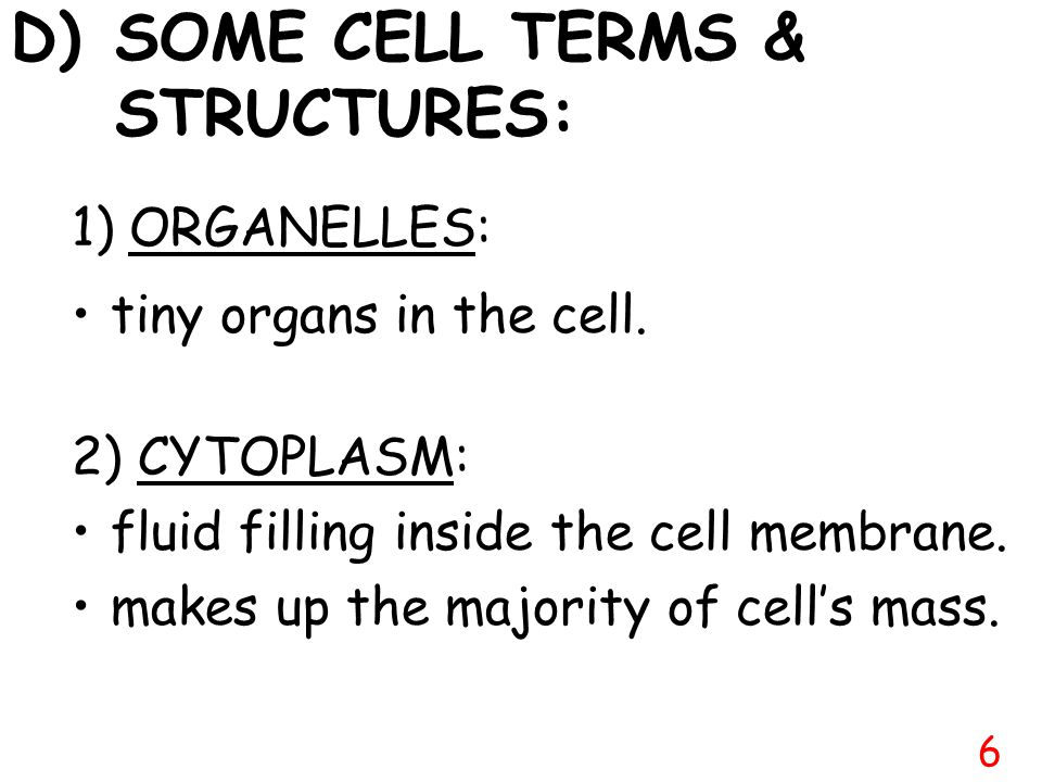 D) SOME CELL TERMS & STRUCTURES: