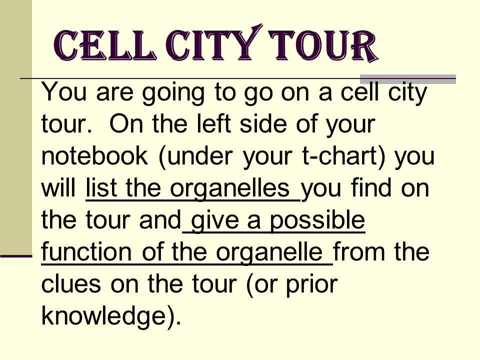 Cell City Tour