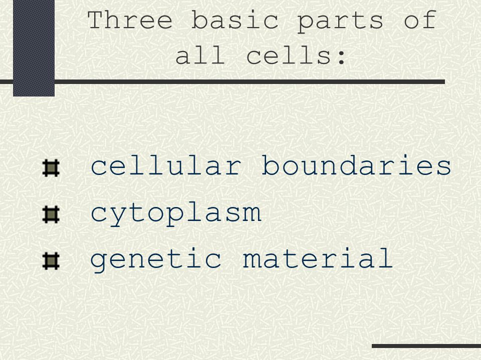 Three basic parts of all cells:
