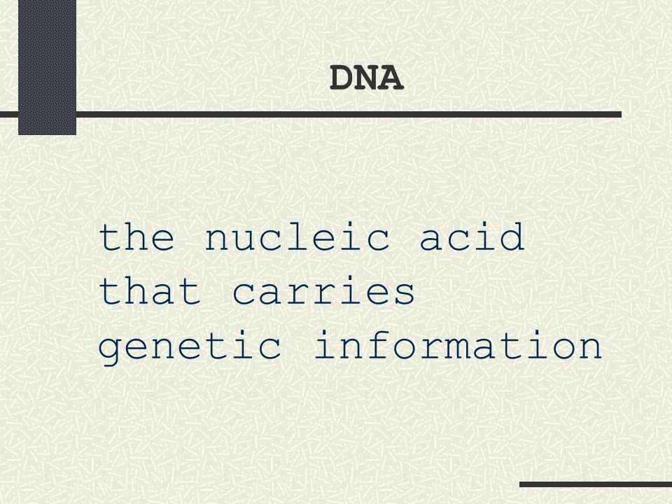 the nucleic acid that carries genetic information