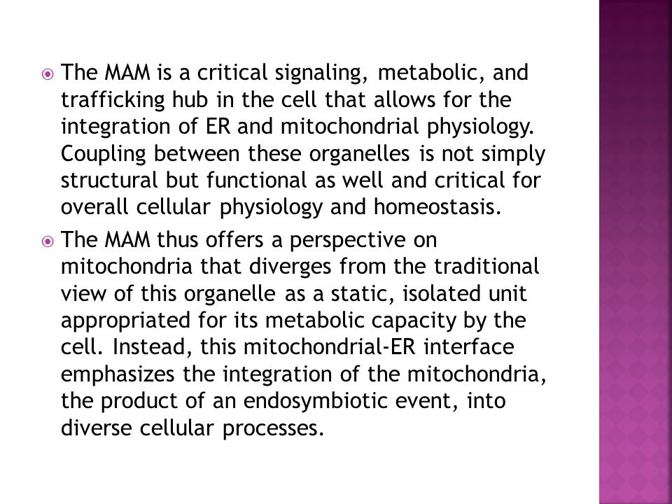 The MAM is a critical signaling, metabolic, and trafficking hub in the cell that allows for the integration of ER and mitochondrial physiology. Coupling between these organelles is not simply structural but functional as well and critical for overall cellular physiology and homeostasis.